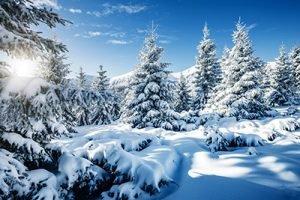 Winterlandschaft Infrarotheizung