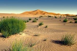 Wüstenlandschaft Infrarotheizung