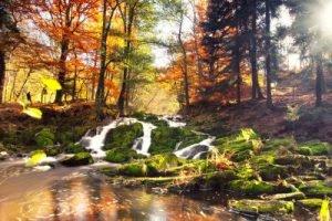 Herbst im Harz Infrarotheizung
