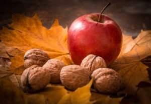 Apfel und Nüsse Infrarotheizung