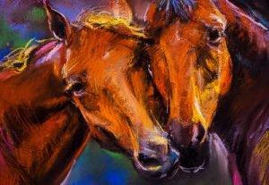 Pferde Infrarotheizung